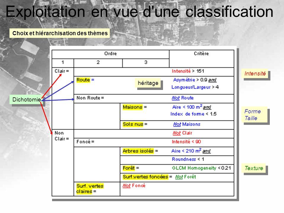 Exploitation en vue d'une classification Choix et hiérarchisation des thèmes Dichotomie héritage Intensité Forme Taille Forme Taille Texture
