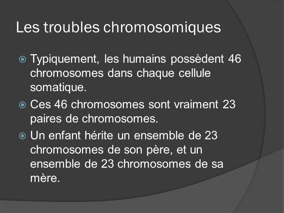 Les troubles chromosomiques Typiquement, les humains possèdent 46 chromosomes dans chaque cellule somatique. Ces 46 chromosomes sont vraiment 23 paire