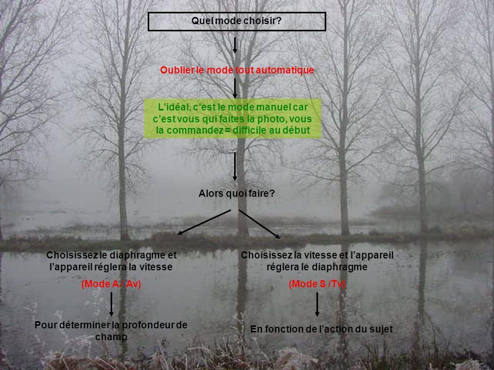 Comment régler lexposition Sur votre écran, une echelle Ev En augmentant ou diminuant la vitesse (ou le diaphragme) on doit régler sur le 0 de léchelle Toutes les zones sont plus ou moins bien exposées, on voit les détails En diminuant les Ev (vers le négatif) la photo est sous-exposée En augmentant les Ev (vers le positif) la photo est sur- exposée