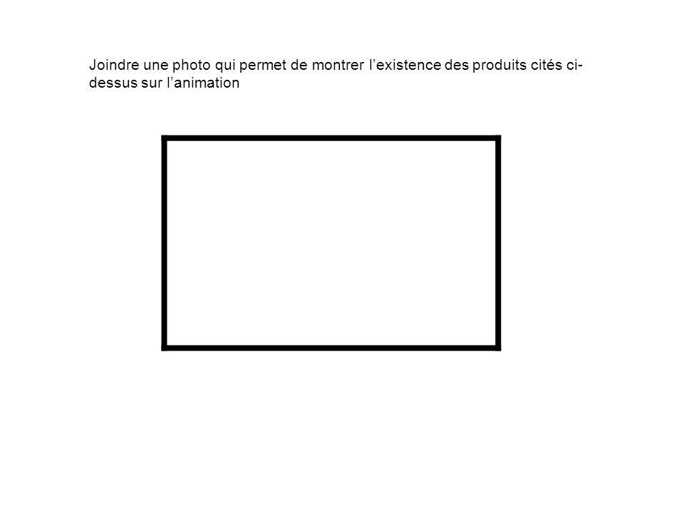 Joindre une photo qui permet de montrer lexistence des produits cités ci- dessus sur lanimation