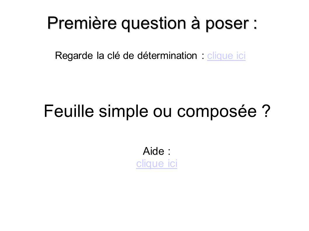 Première question à poser : Feuille simple ou composée .