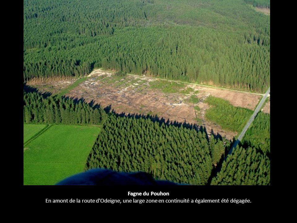 Fagne du Pouhon En amont de la route d'Odeigne, une large zone en continuité a également été dégagée.