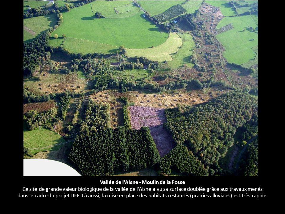 Vallée de l'Aisne - Moulin de la Fosse Ce site de grande valeur biologique de la vallée de l'Aisne a vu sa surface doublée grâce aux travaux menés dan