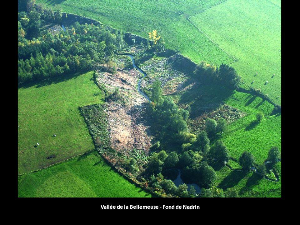Vallée de la Bellemeuse - Fond de Nadrin