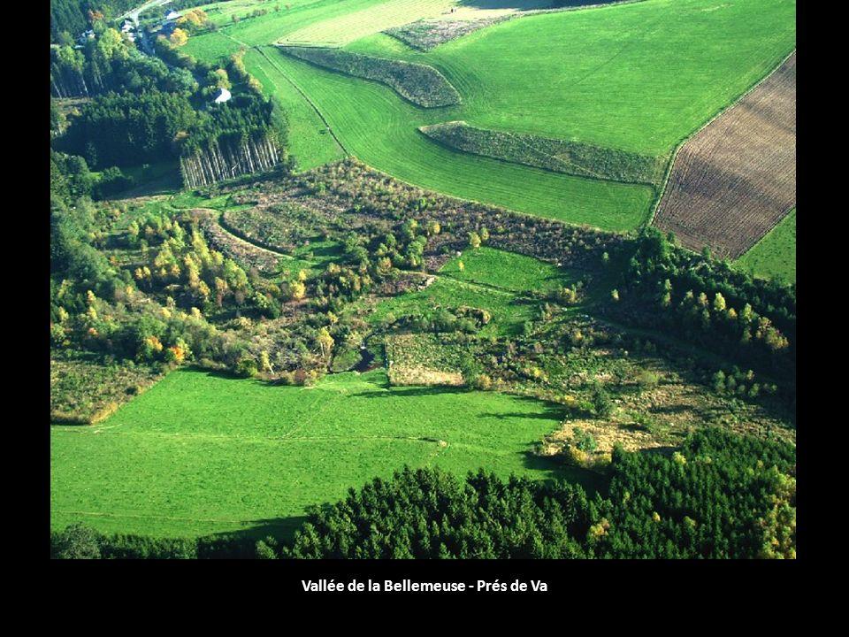 Vallée de la Bellemeuse - Prés de Va