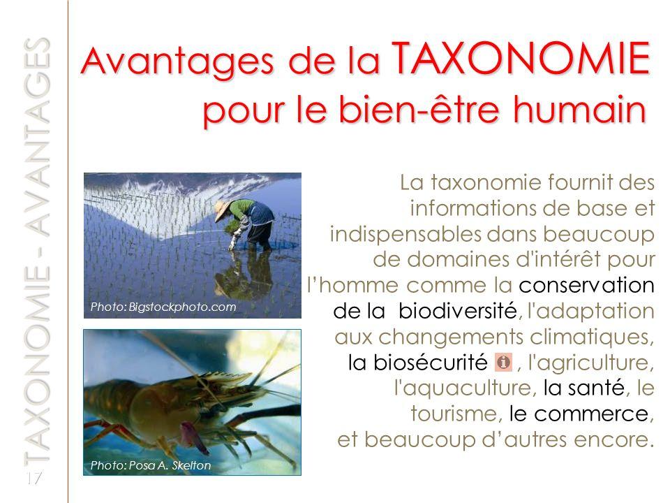 La taxonomie fournit des informations de base et indispensables dans beaucoup de domaines d'intérêt pour lhomme comme la conservation de la biodiversi