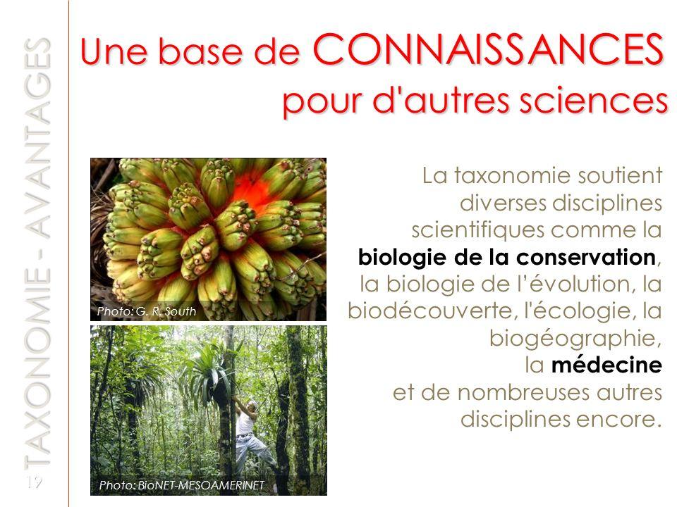 La taxonomie soutient diverses disciplines scientifiques comme la biologie de la conservation, la biologie de lévolution, la biodécouverte, l'écologie