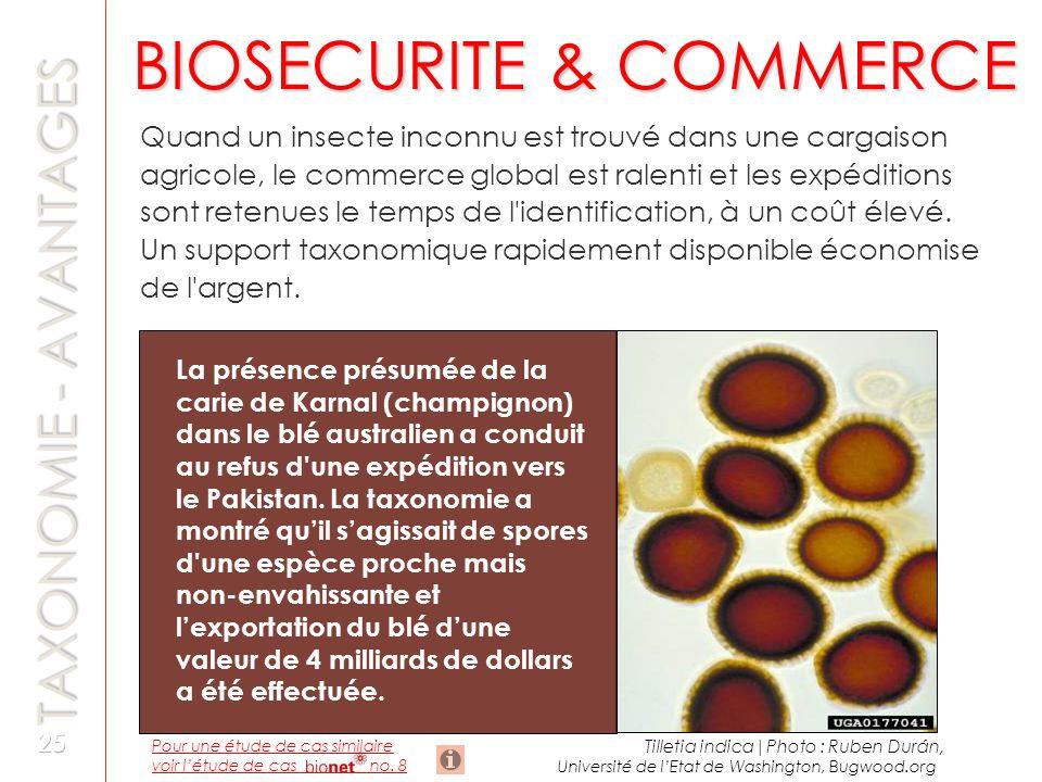 BIOSECURITE & COMMERCE TAXONOMIE - AVANTAGES Quand un insecte inconnu est trouvé dans une cargaison agricole, le commerce global est ralenti et les ex