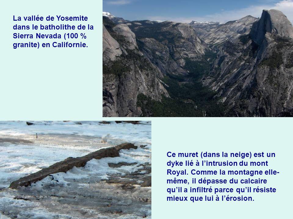 La vallée de Yosemite dans le batholithe de la Sierra Nevada (100 % granite) en Californie. Ce muret (dans la neige) est un dyke lié à lintrusion du m