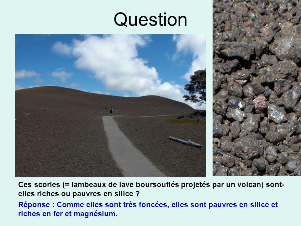 Question Ces scories (= lambeaux de lave boursouflés projetés par un volcan) sont- elles riches ou pauvres en silice ? Réponse : Comme elles sont très