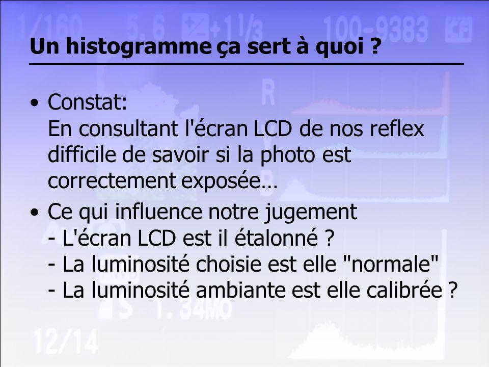 Un histogramme ça sert à quoi ? Constat: En consultant l'écran LCD de nos reflex difficile de savoir si la photo est correctement exposée… Ce qui infl