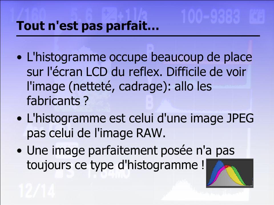 Tout n'est pas parfait… L'histogramme occupe beaucoup de place sur l'écran LCD du reflex. Difficile de voir l'image (netteté, cadrage): allo les fabri