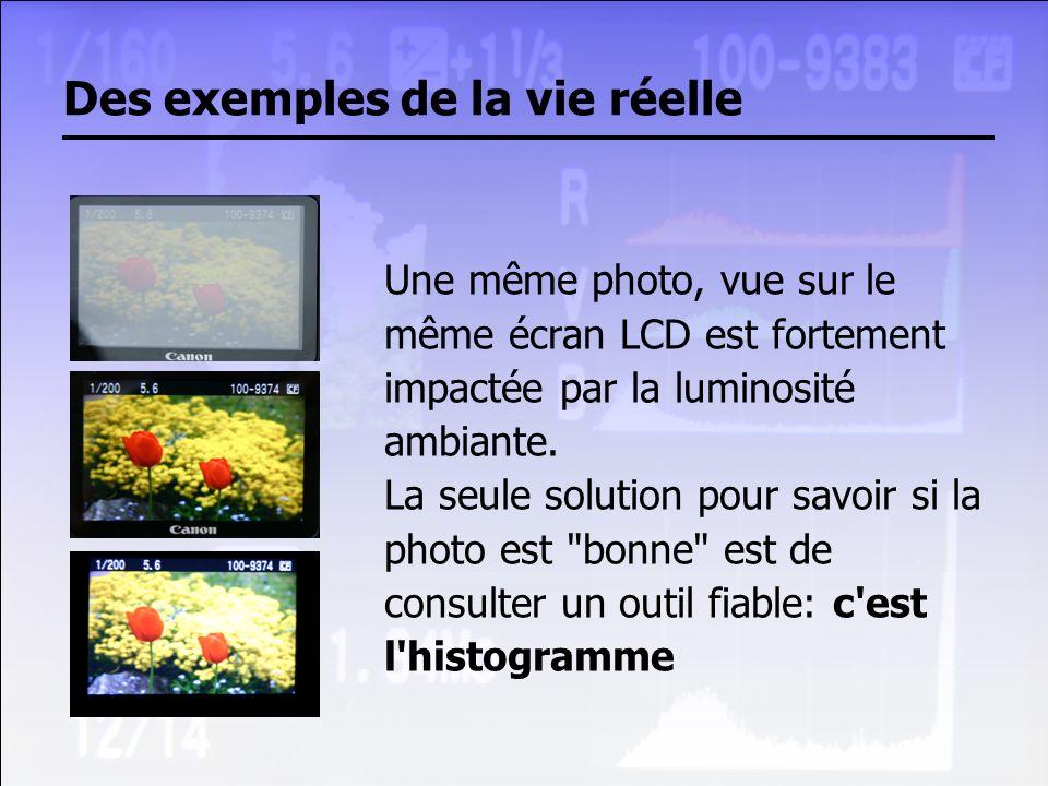 Des exemples de la vie réelle Une même photo, vue sur le même écran LCD est fortement impactée par la luminosité ambiante. La seule solution pour savo