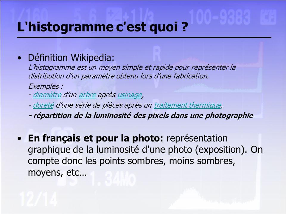 L'histogramme c'est quoi ? Définition Wikipedia: Lhistogramme est un moyen simple et rapide pour représenter la distribution dun paramètre obtenu lors