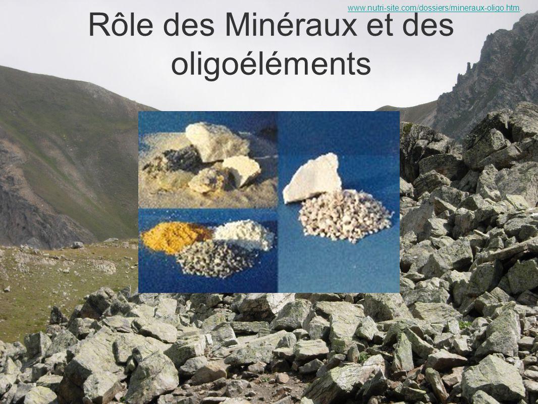 Rôle des Minéraux et des oligoéléments www.nutri-site.com/dossiers/mineraux-oligo.htmwww.nutri-site.com/dossiers/mineraux-oligo.htm.