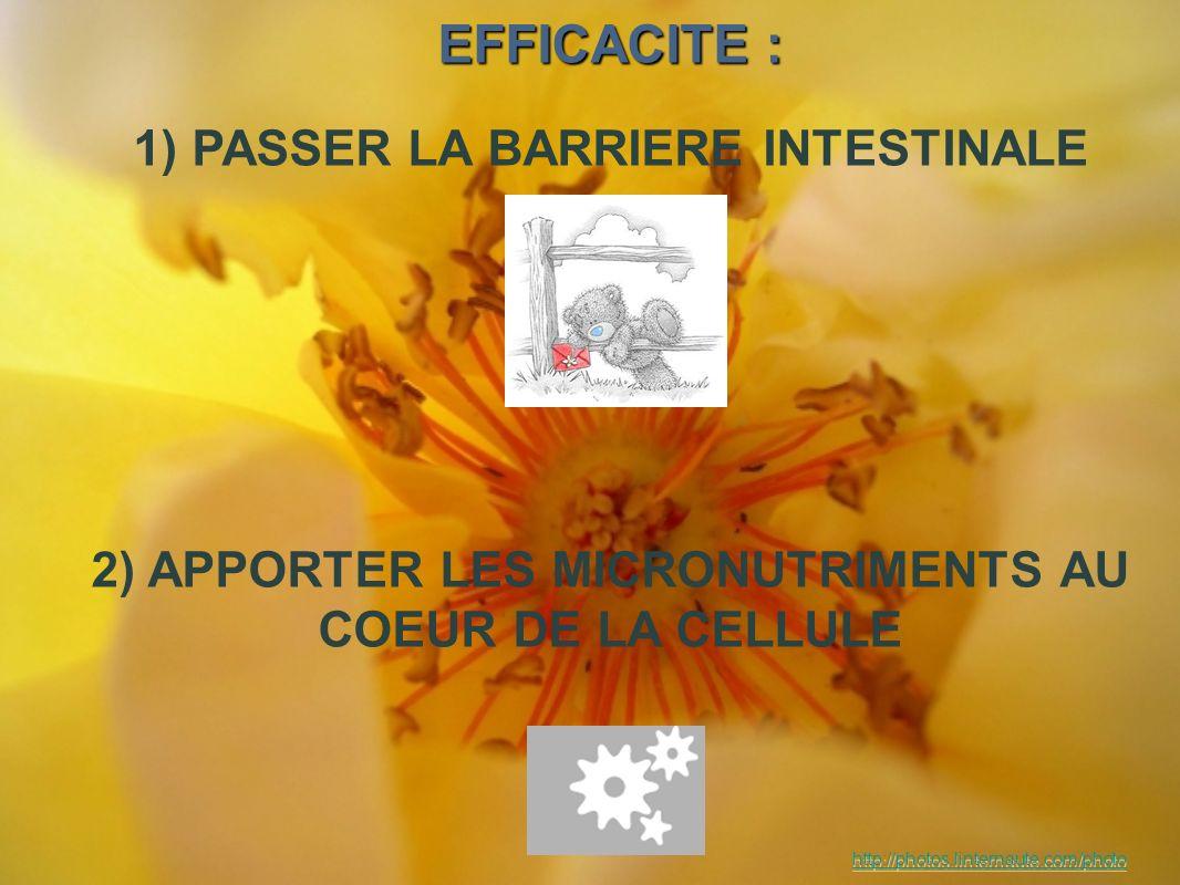 EFFICACITE : 1) PASSER LA BARRIERE INTESTINALE 2) APPORTER LES MICRONUTRIMENTS AU COEUR DE LA CELLULE http://photos.linternaute.com/photo