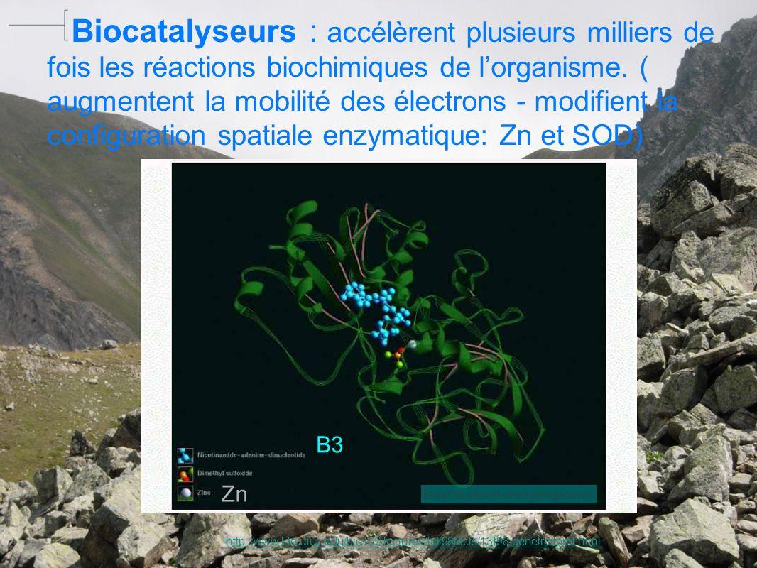 ? http://photos.linternaute.com/photo