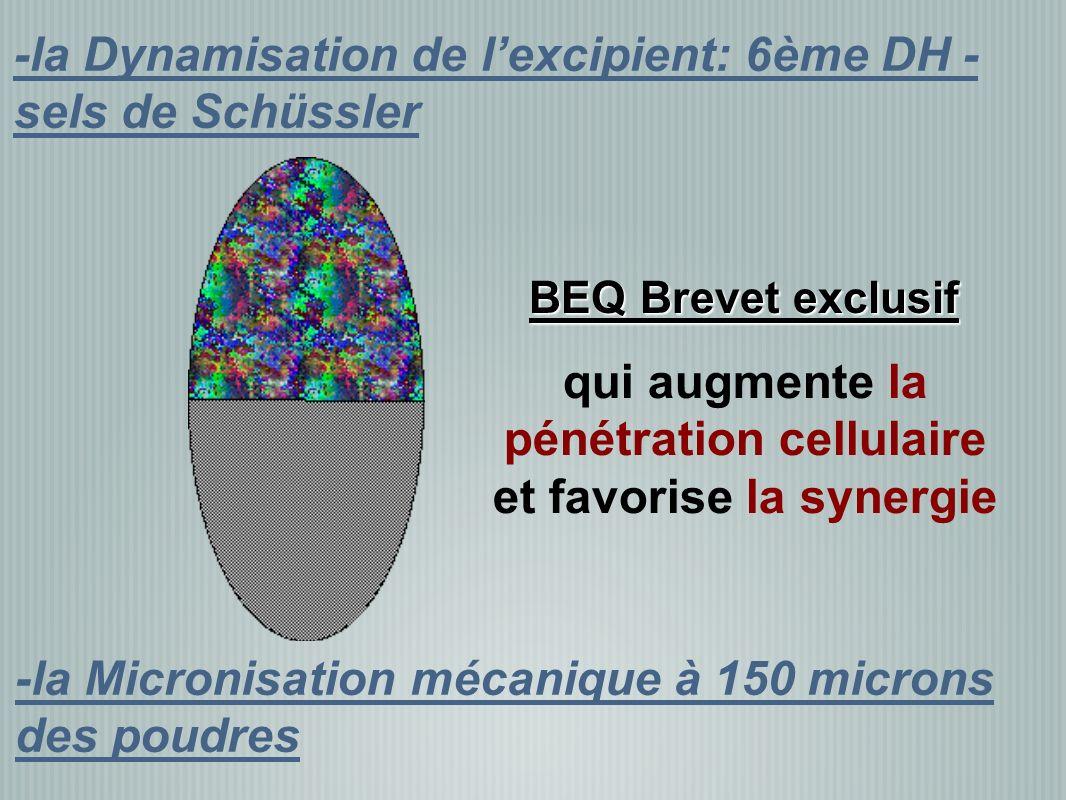 -la Micronisation mécanique à 150 microns des poudres -la Dynamisation de lexcipient: 6ème DH - sels de Schüssler qui augmente la pénétration cellulaire et favorise la synergie BEQ Brevet exclusif