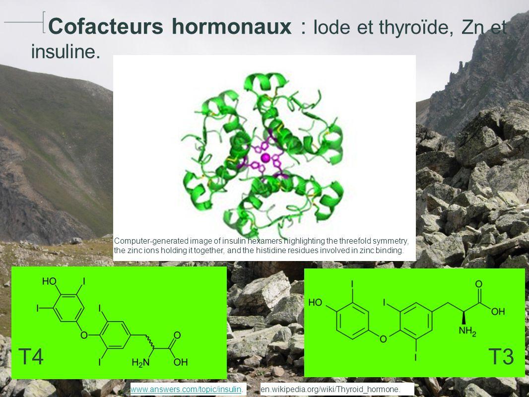 Hydroxyapatite Ca10(PO4)6(OH2) Author : HGS www.cnpbook.com/.../gallery/index.htmlwww.cnpbook.com/.../gallery/index.html.