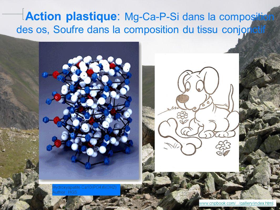 Taux dabsorption intestinale relevés dans dictionnaire Vidal sels de calcium30 % sels de magnésium 50% sels de Fer1 % à 20 % sels de Zinc33 % en moyenne1 à 30 % http://photos.linternaute.com/photo