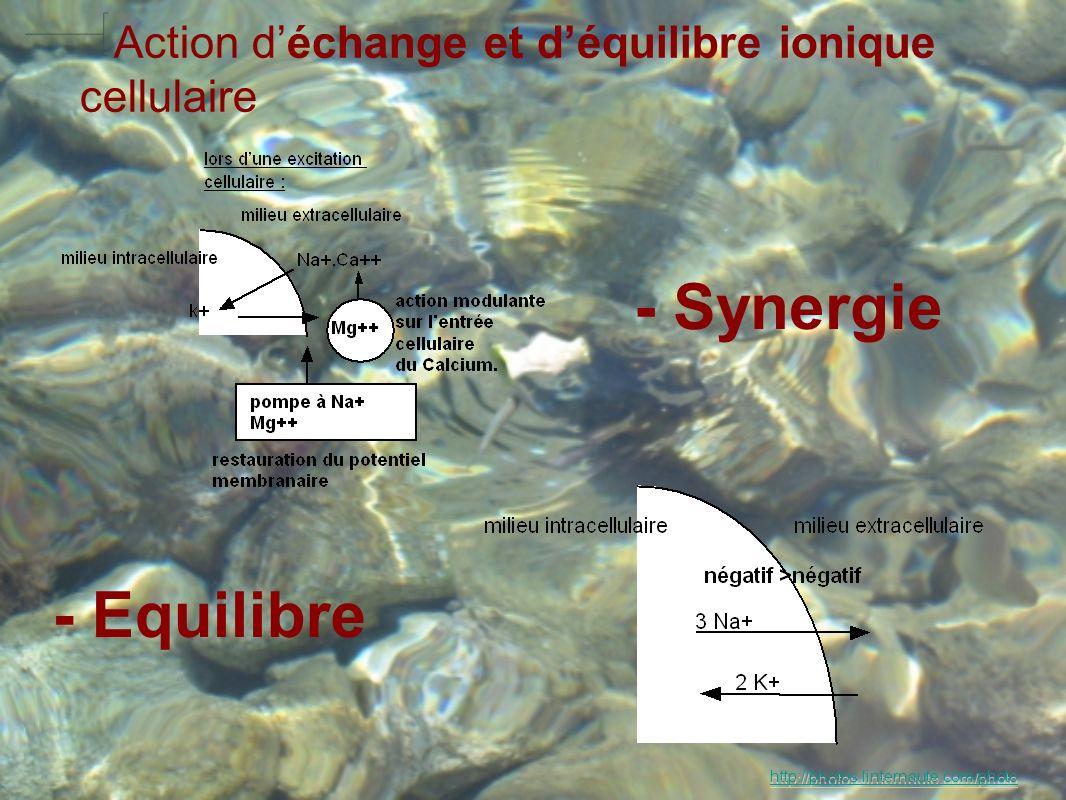 - Equilibre - Synergie Action déchange et déquilibre ionique cellulaire http://photos.linternaute.com/photo