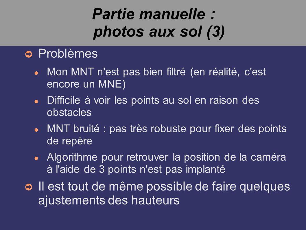 Partie manuelle : photos aux sol (3) Problèmes Mon MNT n'est pas bien filtré (en réalité, c'est encore un MNE) Difficile à voir les points au sol en r