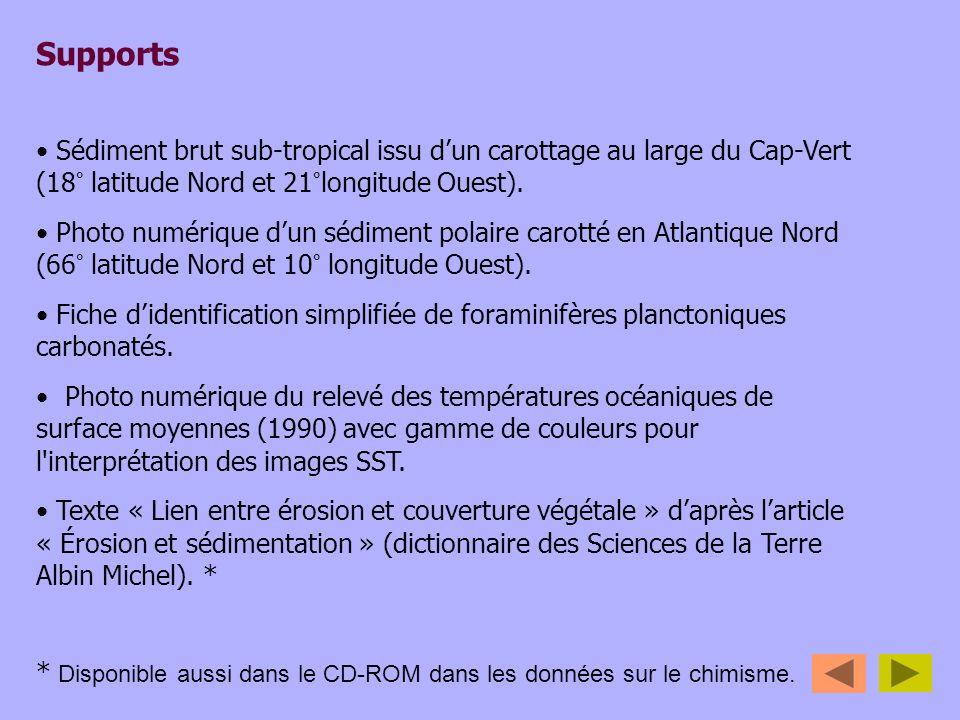 Supports Sédiment brut sub-tropical issu dun carottage au large du Cap-Vert (18° latitude Nord et 21°longitude Ouest). Photo numérique dun sédiment po