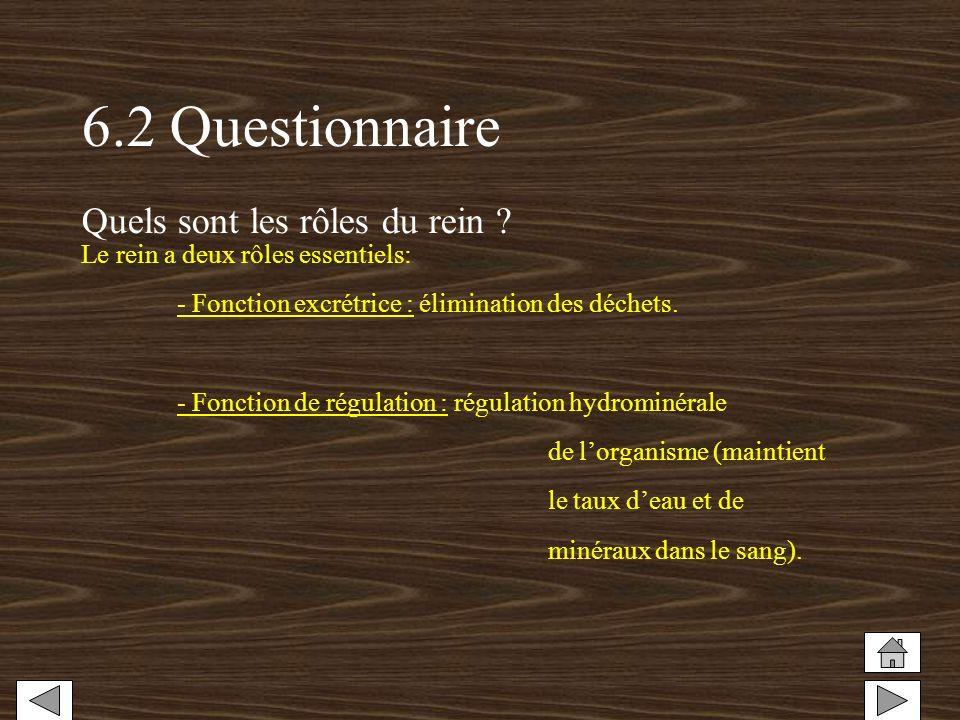 6.2 Questionnaire Quels sont les rôles du rein ? Le rein a deux rôles essentiels: - Fonction excrétrice : élimination des déchets. - Fonction de régul