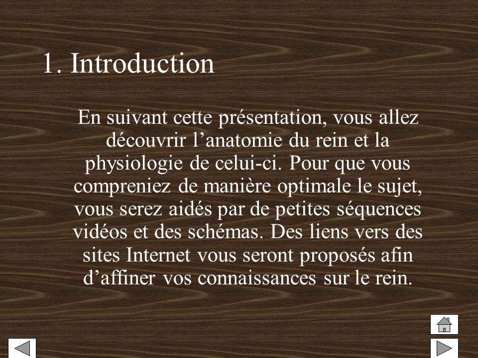 1. Introduction En suivant cette présentation, vous allez découvrir lanatomie du rein et la physiologie de celui-ci. Pour que vous compreniez de maniè