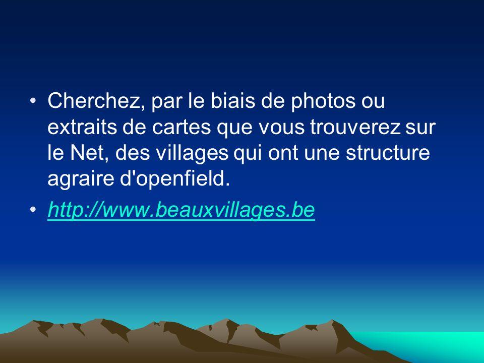 Cherchez, par le biais de photos ou extraits de cartes que vous trouverez sur le Net, des villages qui ont une structure agraire d'openfield. http://w