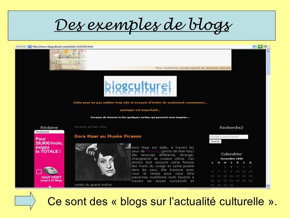 Ce sont des « blogs sur lactualité culturelle ».