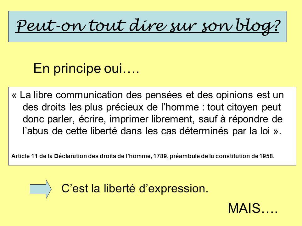Peut-on tout dire sur son blog? En principe oui…. « La libre communication des pensées et des opinions est un des droits les plus précieux de lhomme :