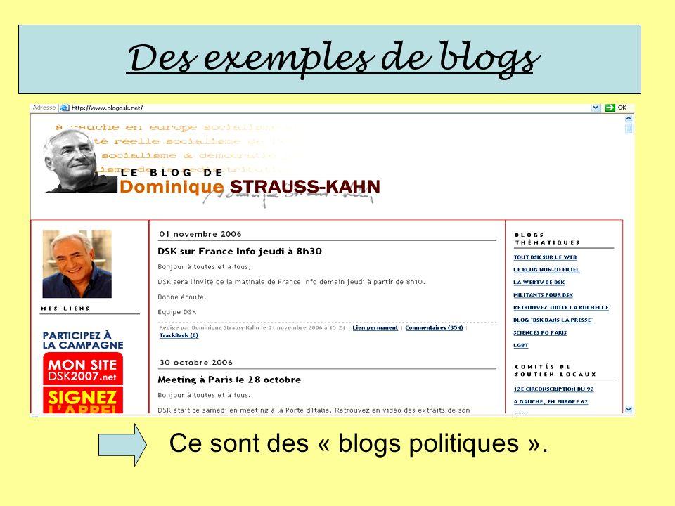 Ce sont des « blogs politiques ».