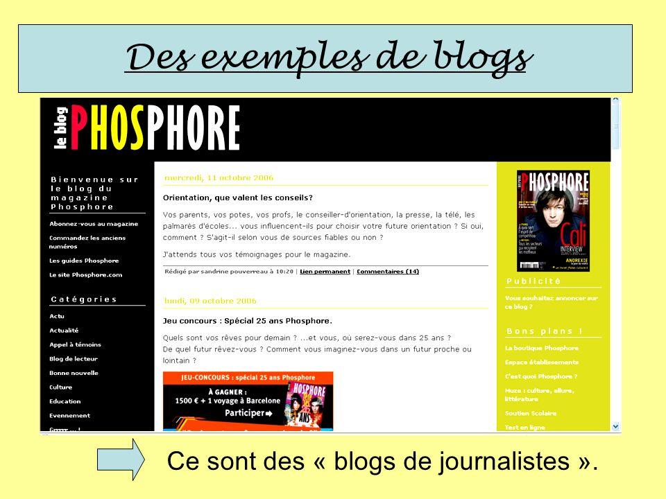 Ce sont des « blogs de journalistes ».