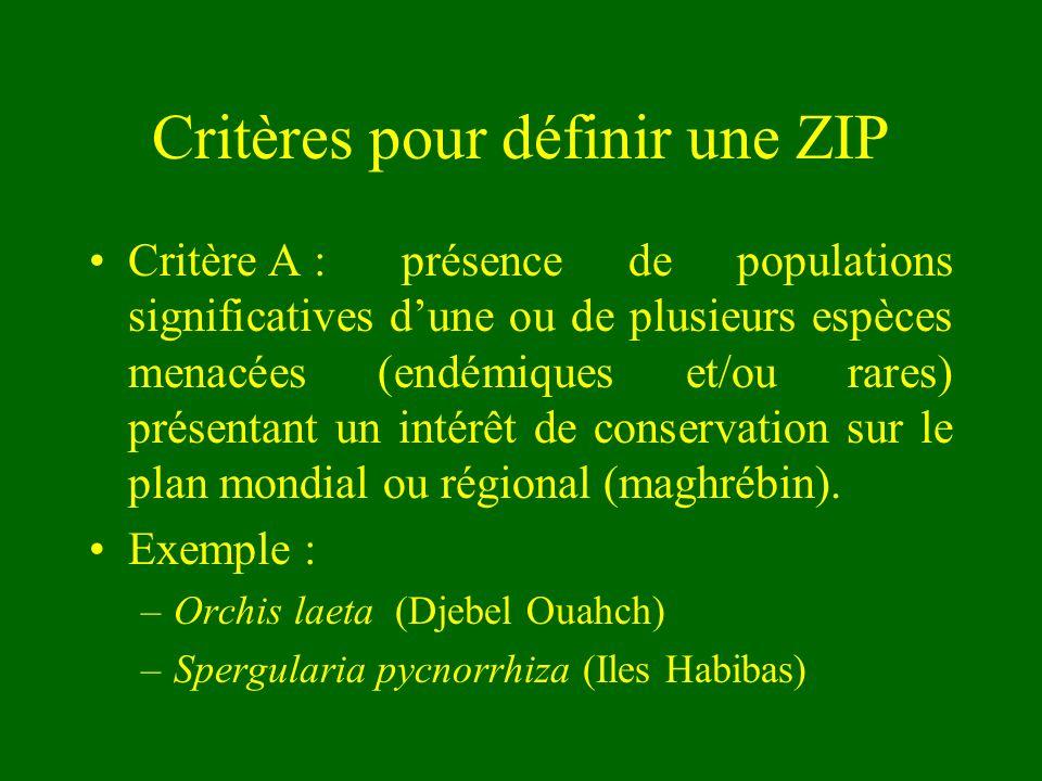 Critères pour définir une ZIP Critère A : présence de populations significatives dune ou de plusieurs espèces menacées (endémiques et/ou rares) présen