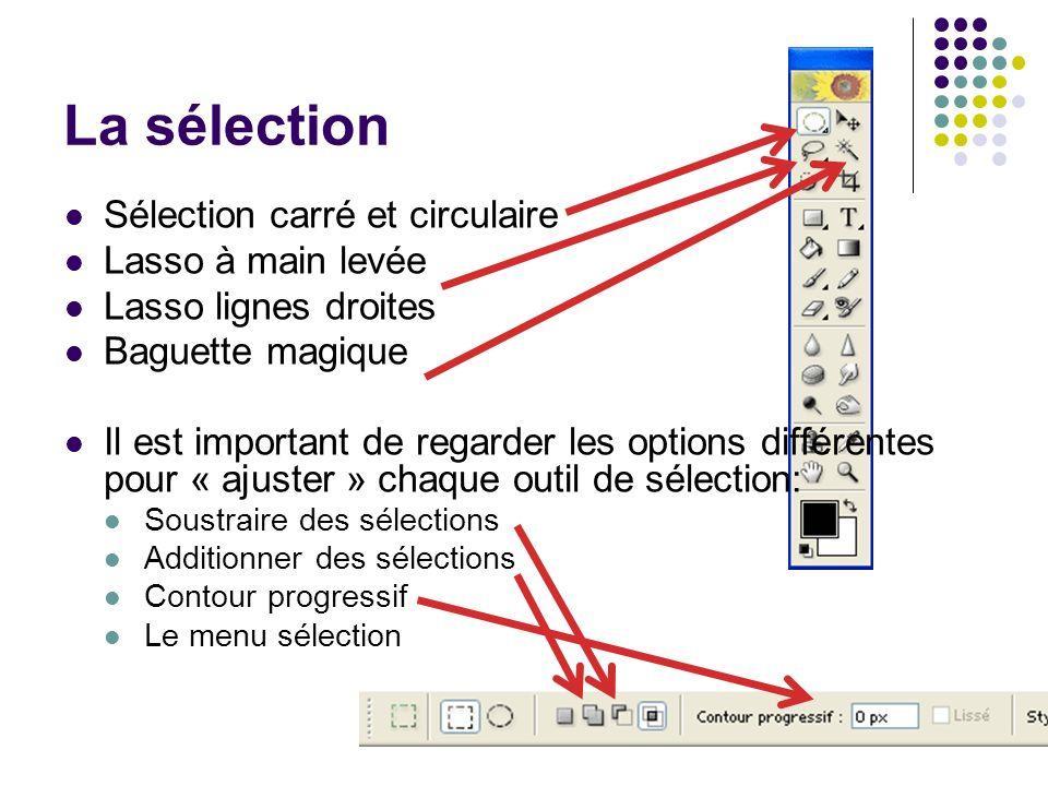 31 La sélection Sélection carré et circulaire Lasso à main levée Lasso lignes droites Baguette magique Il est important de regarder les options différ