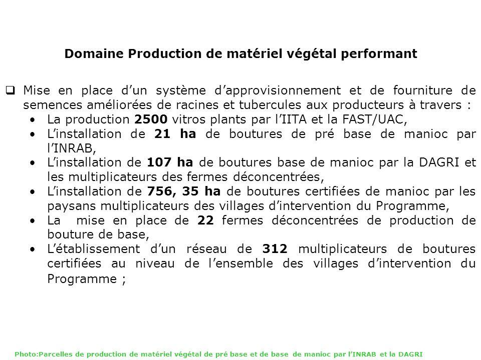 Domaine Production de matériel végétal performant Mise en place dun système dapprovisionnement et de fourniture de semences améliorées de racines et t
