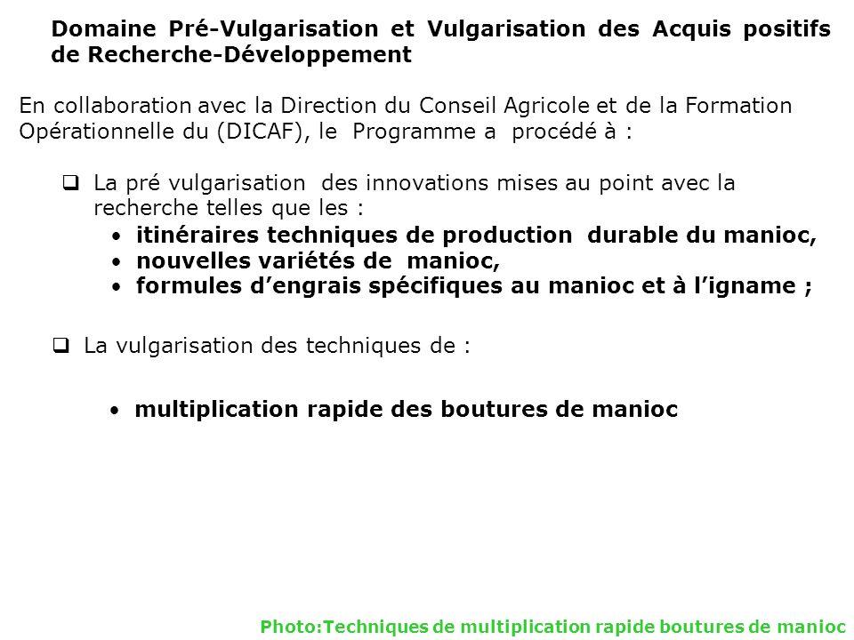 Domaine Pré-Vulgarisation et Vulgarisation des Acquis positifs de Recherche-Développement En collaboration avec la Direction du Conseil Agricole et de