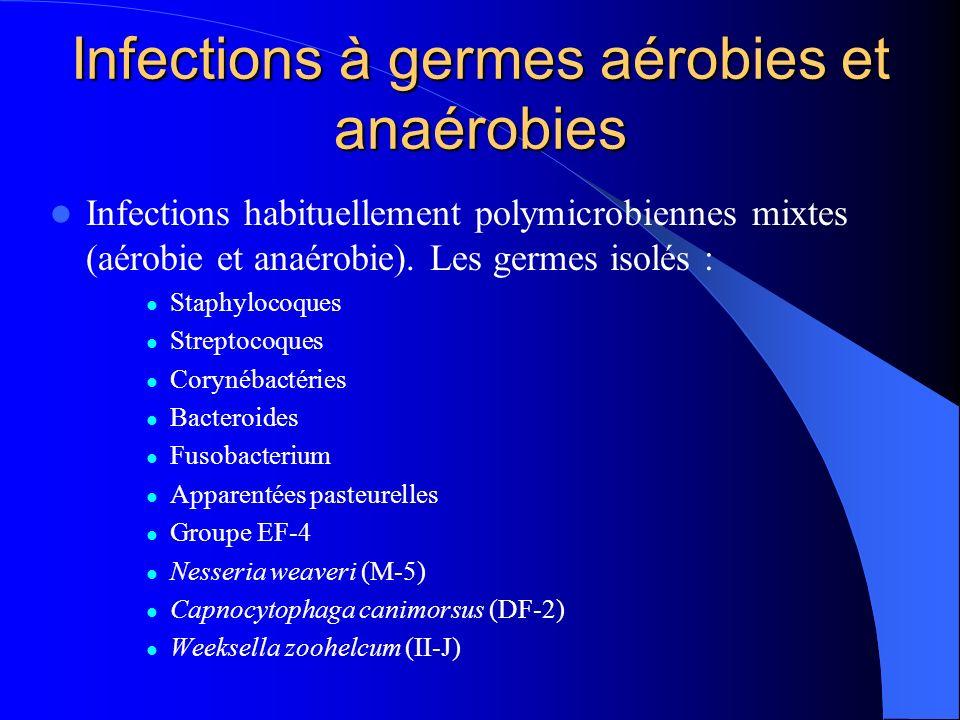 Infections à germes aérobies et anaérobies Infections habituellement polymicrobiennes mixtes (aérobie et anaérobie). Les germes isolés : Staphylocoque