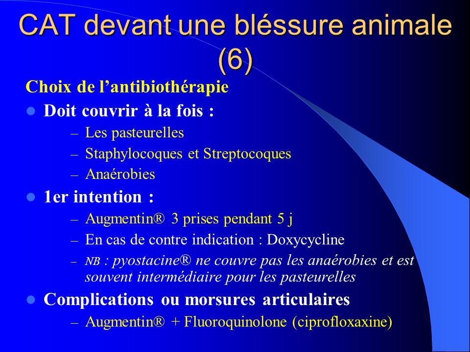 CAT devant une bléssure animale (6) Choix de lantibiothérapie Doit couvrir à la fois : – Les pasteurelles – Staphylocoques et Streptocoques – Anaérobi