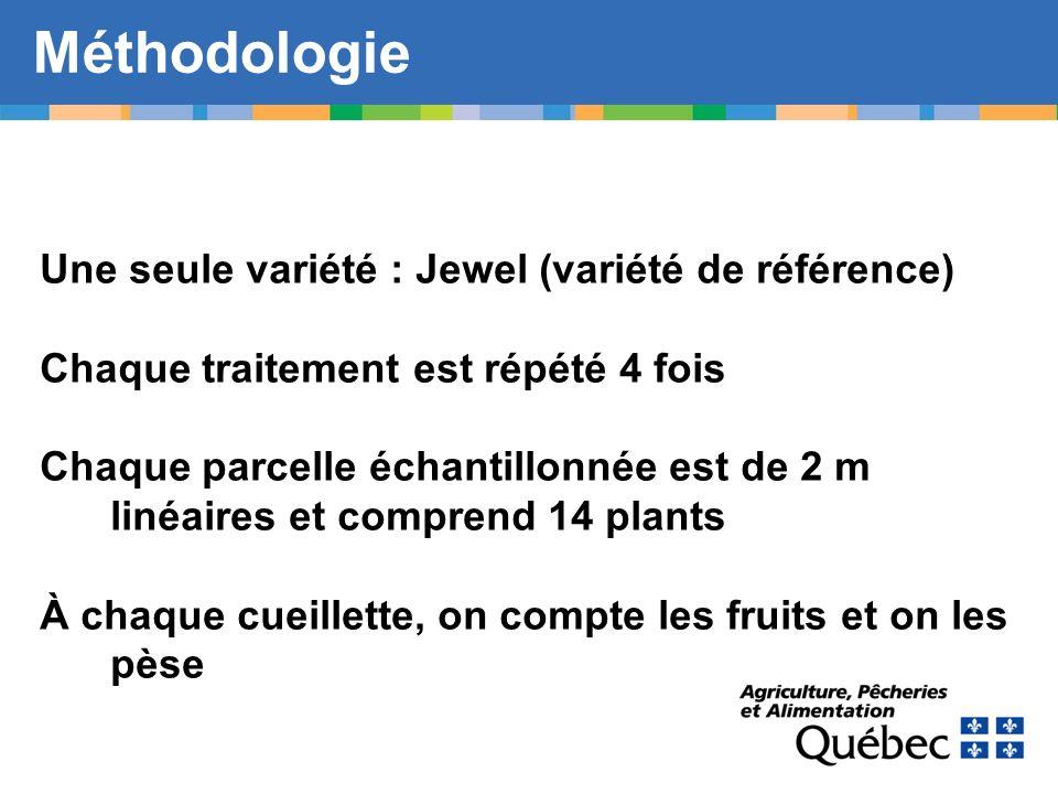 Méthodologie Une seule variété : Jewel (variété de référence) Chaque traitement est répété 4 fois Chaque parcelle échantillonnée est de 2 m linéaires