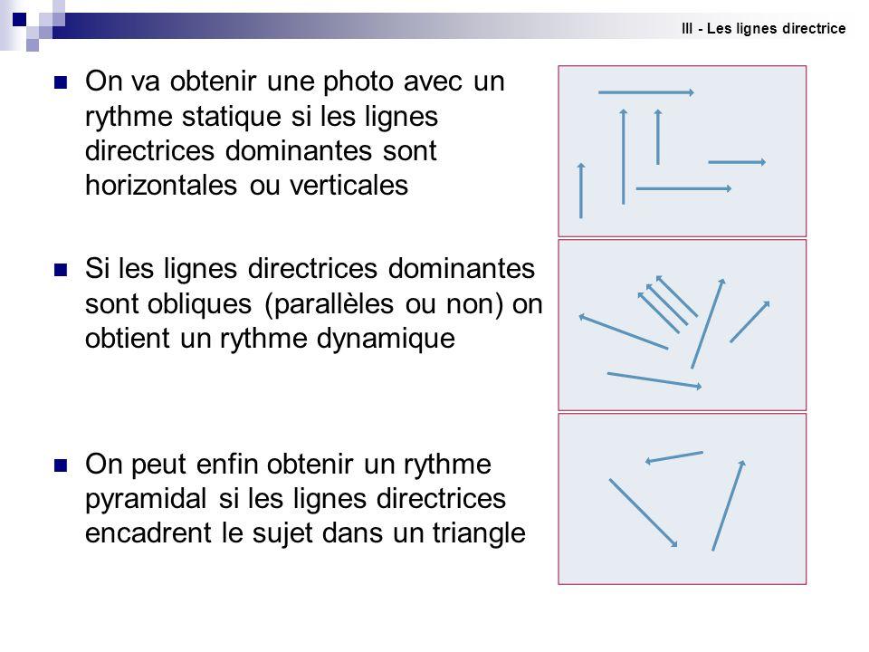 III - Les lignes directrice On va obtenir une photo avec un rythme statique si les lignes directrices dominantes sont horizontales ou verticales Si le