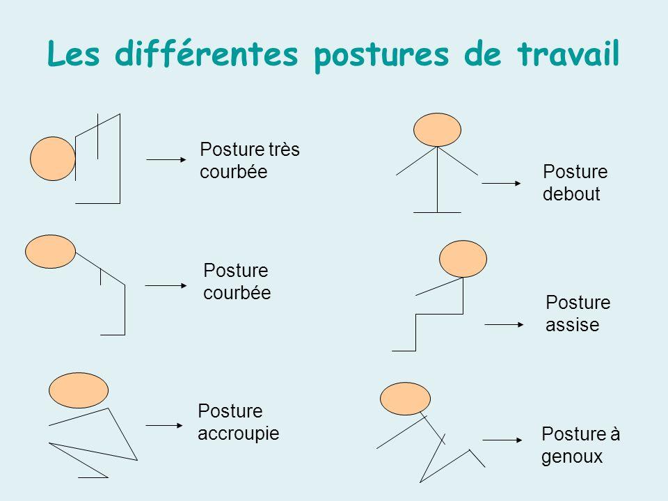 Les différentes postures de travail Posture très courbée Posture courbée Posture accroupie Posture debout Posture assise Posture à genoux