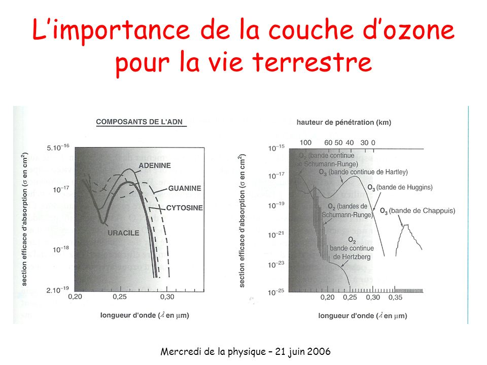 Mercredi de la physique – 21 juin 2006 Le cycle de Chapman équilibre photo-stationnaire Maximum à 25km Surestime les concentrations prédit Flux de photonsConcentration dO 2 Maximum dozone implique Production ozone dépend altitude