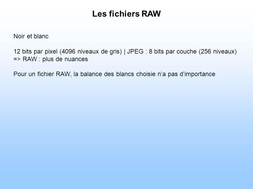 Noir et blanc 12 bits par pixel (4096 niveaux de gris)   JPEG : 8 bits par couche (256 niveaux) => RAW : plus de nuances Pour un fichier RAW, la balance des blancs choisie na pas dimportance
