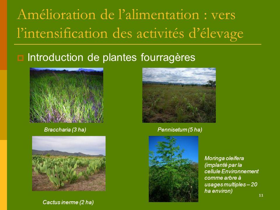 11 Amélioration de lalimentation : vers lintensification des activités délevage Introduction de plantes fourragères Braccharia (3 ha)Pennisetum (5 ha)