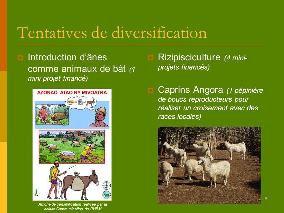8 Tentatives de diversification Introduction dânes comme animaux de bât (1 mini-projet financé) Rizipisciculture (4 mini- projets financés) Caprins An