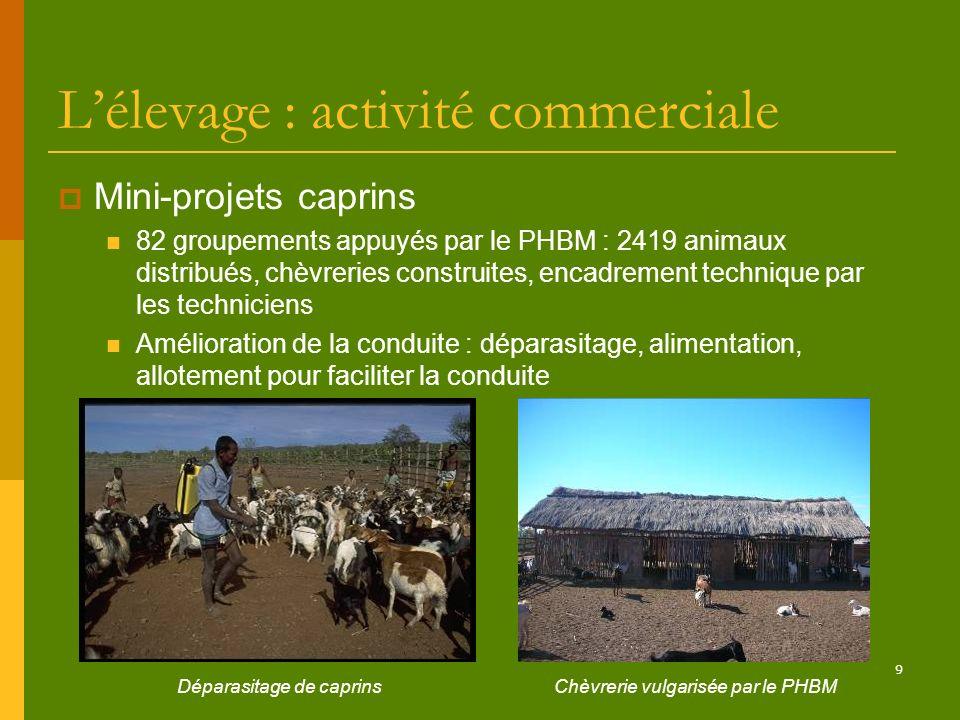 9 Lélevage : activité commerciale Mini-projets caprins 82 groupements appuyés par le PHBM : 2419 animaux distribués, chèvreries construites, encadreme
