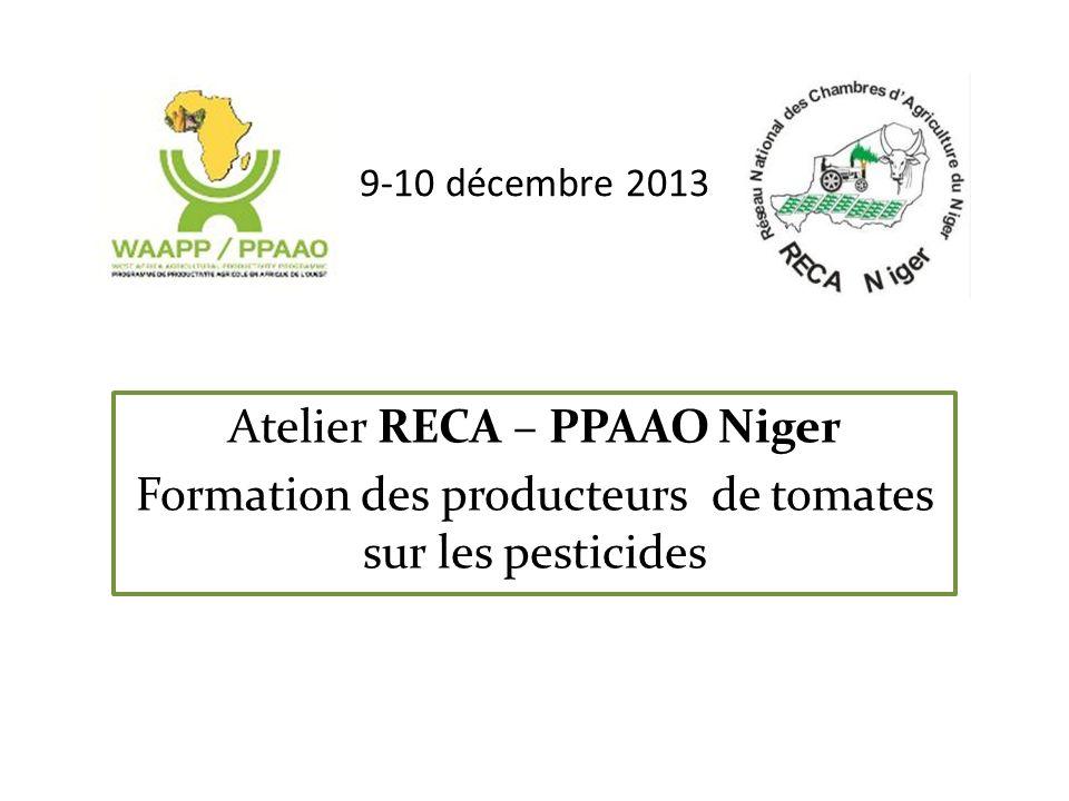 9-10 décembre 2013 Atelier RECA – PPAAO Niger Formation des producteurs de tomates sur les pesticides