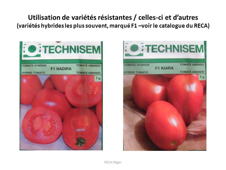 Utilisation de variétés résistantes / celles-ci et dautres (variétés hybrides les plus souvent, marqué F1 –voir le catalogue du RECA) RECA Niger